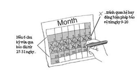 Cách tính ngày rụng trứng để quan hệ an toàn